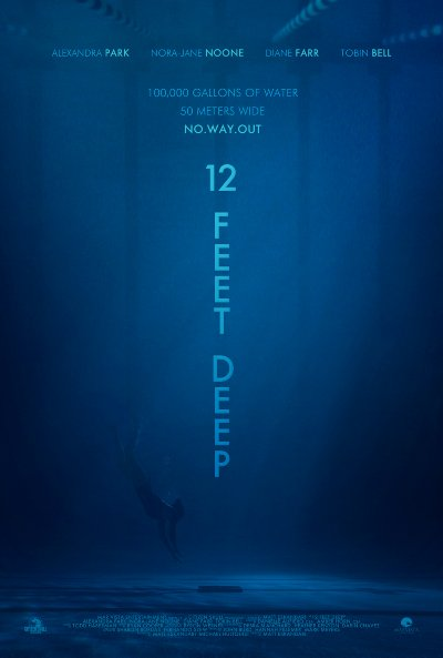 12 Feet Deep 2017 1080p BluRay DTS x264-VETO