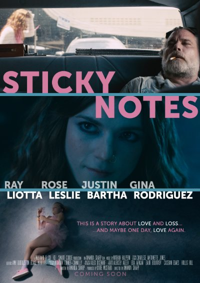 Sticky Notes 2016 1080p WEB-DL AAC x264-FGT