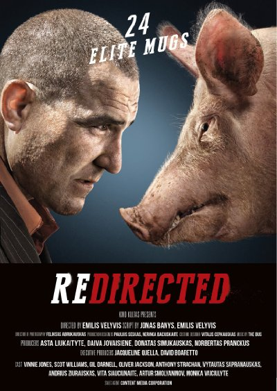 Redirected 2014 BluRay REMUX 1080p AVC DTS-HD MA 5.1-SiCaRio
