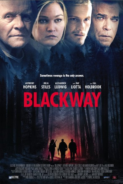 Blackway AKA Go with Me 2015 1080p BluRay DTS x264-VETO