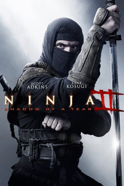 Ninja Shadow Of A Tear 2013 1080p BluRay DD5.1 x264-CCAT