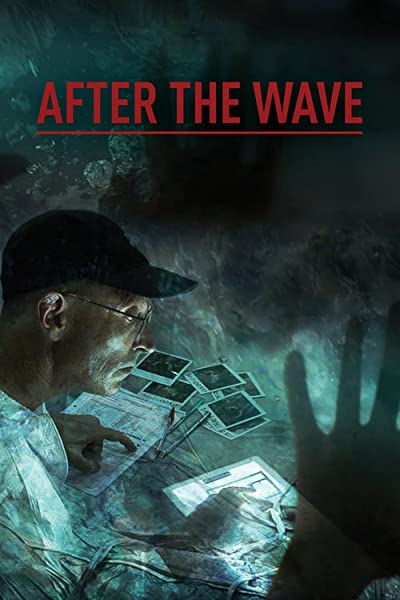 After The Wave The Worlds Greatest Forensic Detective Story 2014 1080p WEB-DL H264-CBFM